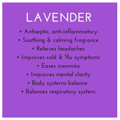 Lavender-CHI-Benefits