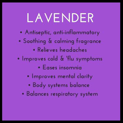 Lavender-CHI-Benefits