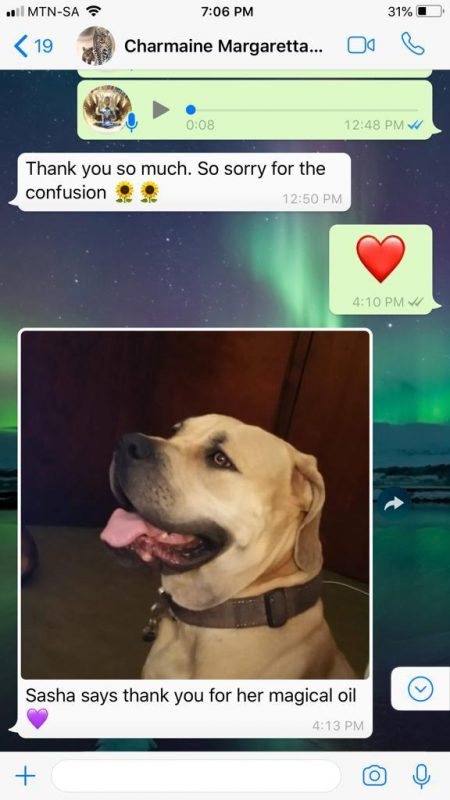 CannaChi Dog Image testimonial
